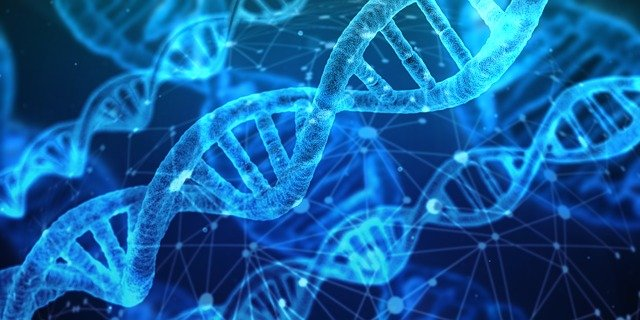 DNA Analysis Research Genetic Material