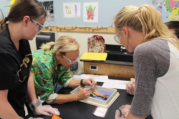 Middle School Science Teacher